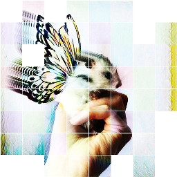 pic ispiration picturoftheday color art freetoedit