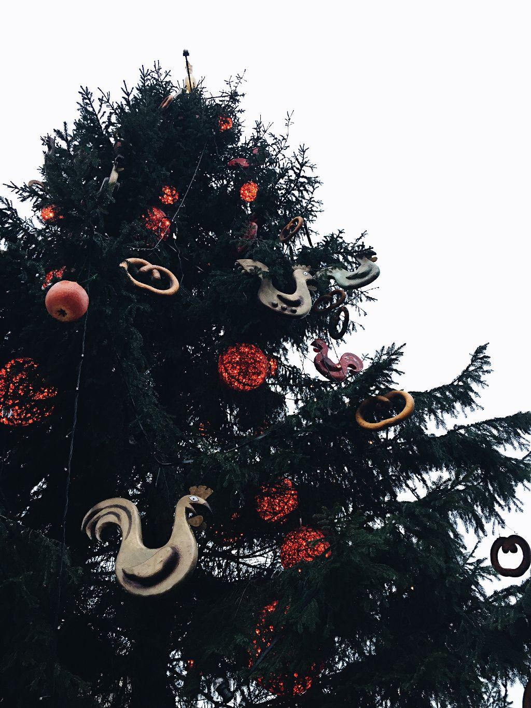 #FreeToEdit #christmas #christmastree #christmaslights #christmastime #decoration