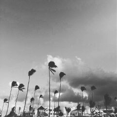 sky skyphotography beautiful blackandwhite