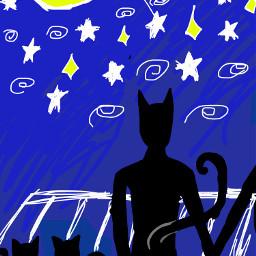 art cats night moon stars