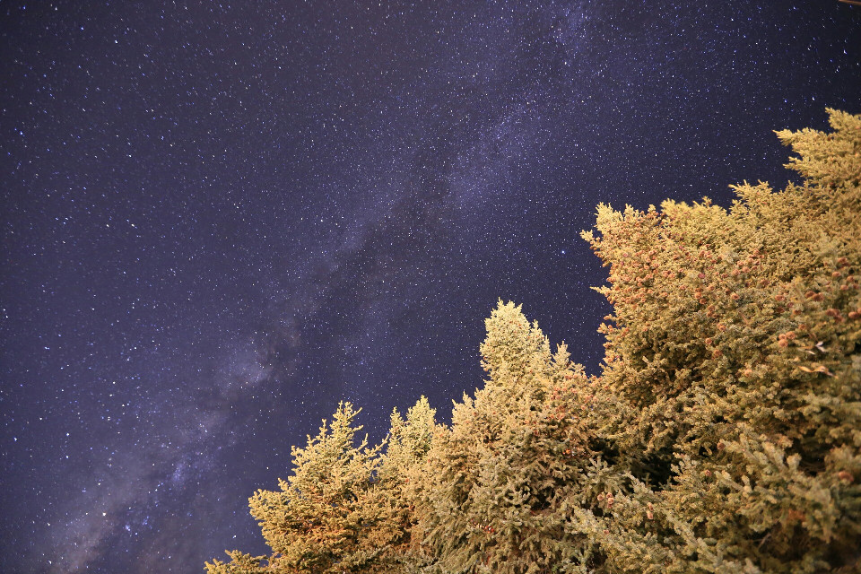 Taken at 4200 meters above sea level in the Qinghai Tibet Plateau。#sky #star  #nature  #photography