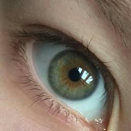 freetoedit eye eyes hazel hazeleyes