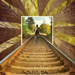 freetoedit mountainbiking redwoods forestlife railway
