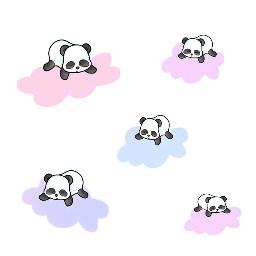 pandacloudremix freetoedit pandas