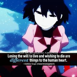 anime animequotes quotesandsayings notminejustfilteredit owarimonogatari freetoedit