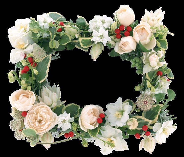 Цветы#FreeToEdit