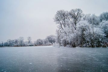 onthelake frozen
