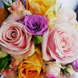 bridalbouquet weddingbouquet bridalflowers bunchofflowers flowers