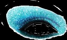 eyeshadow freetoedit